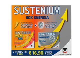 SUSTENIUM BOX ENERGIA 2019 26 BUSTINE